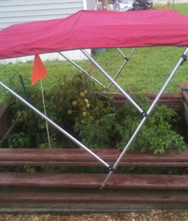 my idea for a lil shade the top is adjustable and folds into it self nicely the top, gardening, pest control