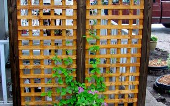sturdy trellis, gardening, Unfortunately a violet hail storm quickly decimated this clematis and though it has come back this year it is just two sad little vines I am hoping that it is photosynthesizing like a maniac and building itself up for next year