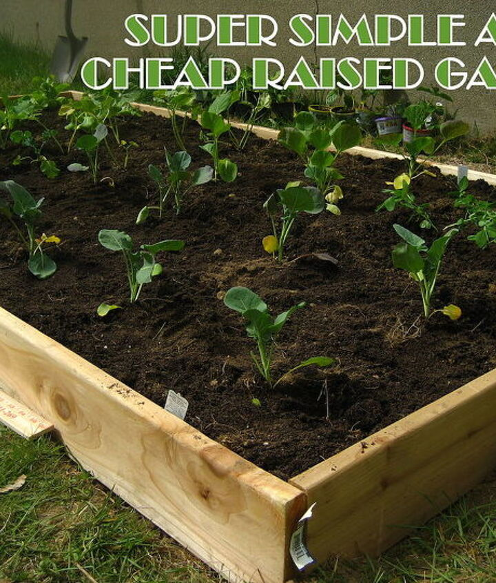our super cheap and simple raised garden bed, gardening, homesteading, raised garden beds