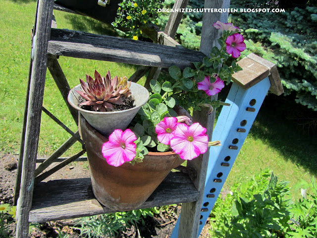 metamorphosis of four container plantings from early june to early july, container gardening, gardening, repurposing upcycling