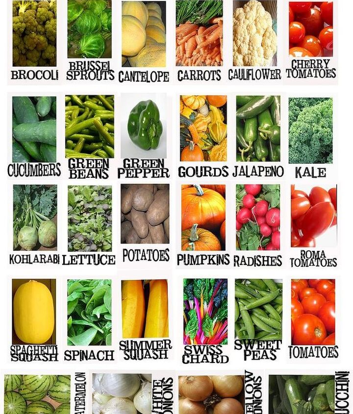 Free Veggie Printable.  I also share a sheet of herb printables as well.