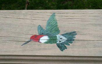 HUMMINGBIRDS (some fun facts)