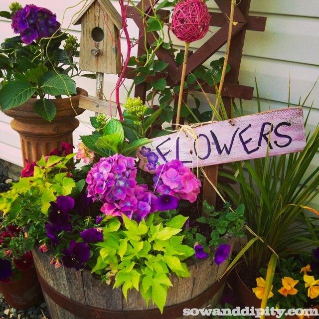flower garden design, container gardening, flowers, gardening