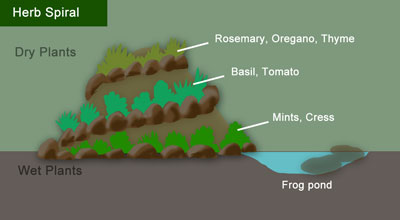 Diagram showing location of the optional pond or bog garden at the bottom & dry/wet zones for planting a variety of herbs.