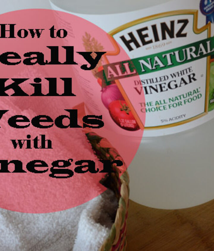 Household vinegar will NOT kill weeds.  Read how to REALLY kill weeds with vinegar.
