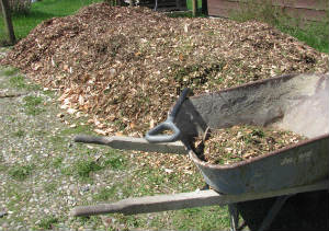 We found a source to have free cedar woodchips delivered to our door, we only paid $30 for the delivery. Call local tree services, logging companies, and phone companies.  Sometimes your city maintenance department will have them.