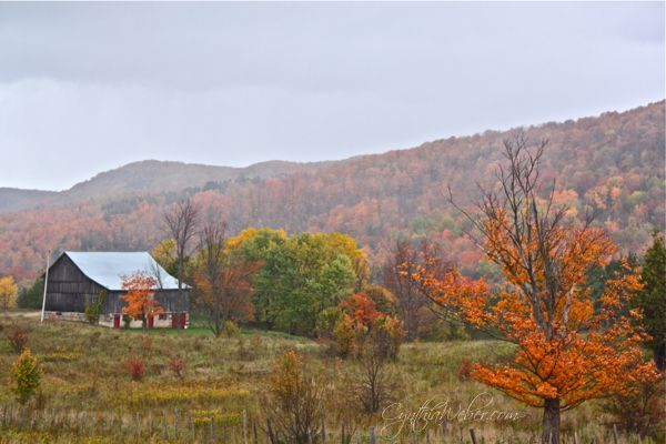 Beaver Valley Ontario in the fall.
