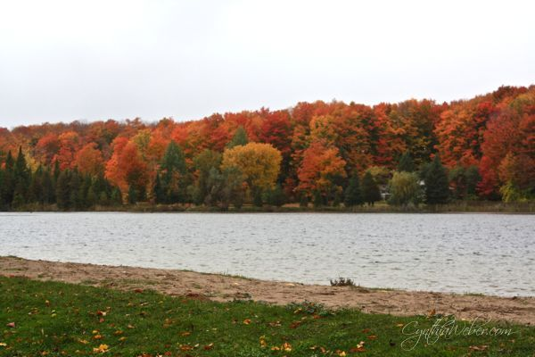 fall in ontario, gardening