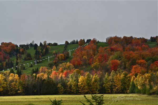 Beaver Valley Ontario