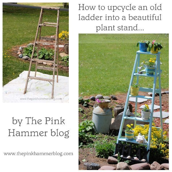 Ladder Plant Stand before/after by Kelly Whitman | The Pink Hammer blog http://www.thepinkhammerblog.com