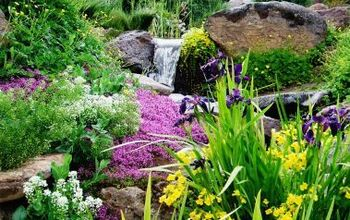 pond aquascape installation, gardening, outdoor living, ponds water features, Finished product in full bloom