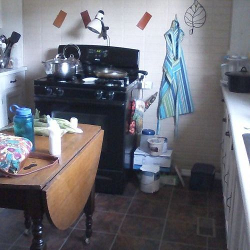 q the lone stove a much needed mini kitchen makeover on a serious budget, home decor, kitchen design