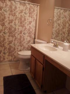 20 bathroom overhaul, bathroom ideas, home decor