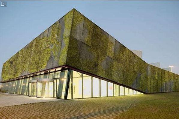 green concrete walls, go green
