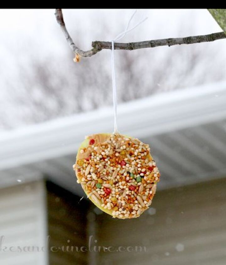 Treats for the birds on a snowy day.