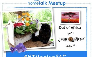 the hometalk meetup that loved on junk and africa, gardening, This meetup was a fundraiser to purchase mosquito nets in Africa to help reduce the spread of malaria It was a life saving cause I was very privileged to be a part of