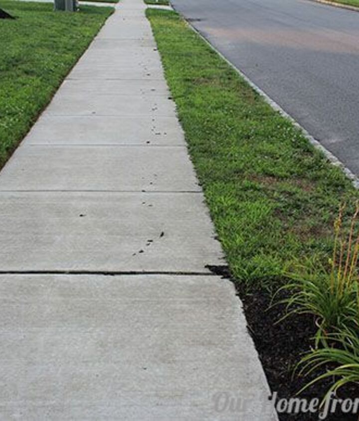 To add insult to injury, the mulch leaves a trail down the sidewalk towards the low point drain on the street, which I need to clean up afterwards.