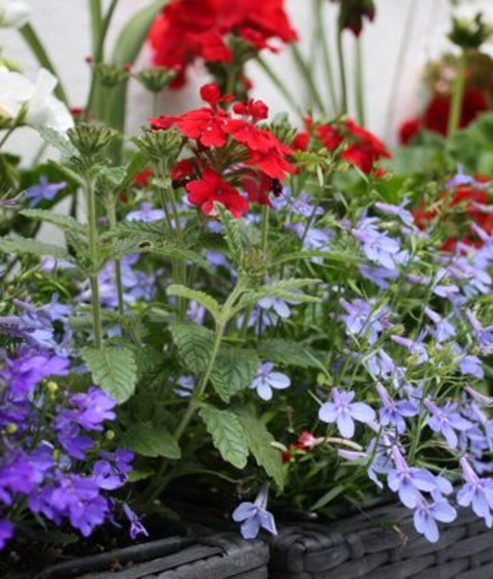upping your curb appeal, curb appeal, flowers, gardening