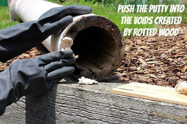 rotten wood repair a two prong attack with the help of elmer, woodworking projects