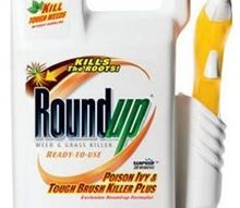 not too long ago i used roundup on some poison ivy and then also on, gardening, products