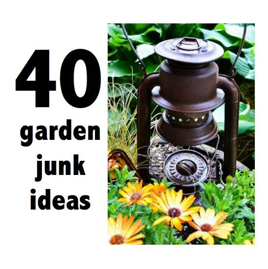How to grow JUNK in your garden | Hometalk