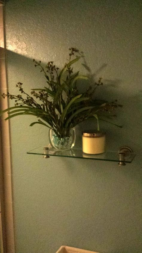 Impromptu plant (I took them out of other arrangements I had around the house. Installed on a shelf I had laying around that didn't fit in our other bathroom.