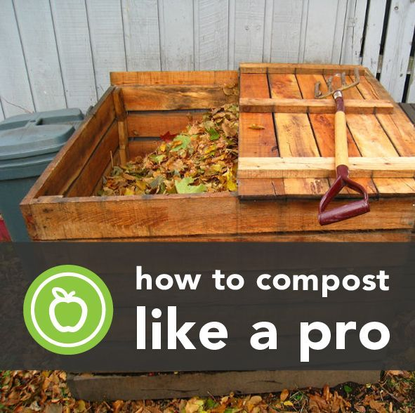 how to make your own compost like a diy pro, composting, go green, homesteading, The circle of life is a real thing and it takes place via a process called composting