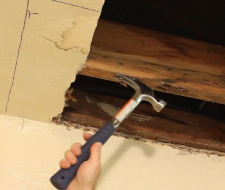 Remove nails or screws from joists or studs