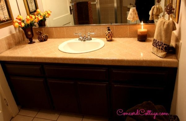 Animal Print Bathroom On A Budget Hometalk