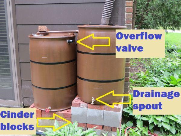 Rain Barrel Setup