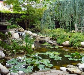 Incroyable Water Gardens Rochester Ny Fish Ponds, Landscape, Ponds Water Features,  Backyard Waterfall Water