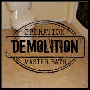 prep a master bath for new flooring finishes, bathroom, diy renovations projects, flooring, remodeling
