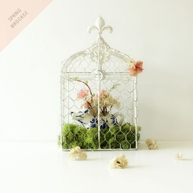Add some fresh pretty moss to the bottom of your birdcage.