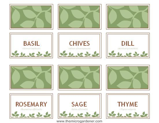 Free printable herb plant label template