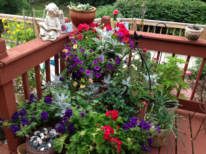 Red | White | Blue Container Plantings
