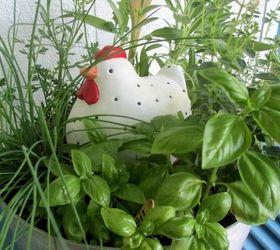 Garden Containers Our Fairfield Home Garden, Container Gardening, Flowers,  Gardening, Cooking Pot. Cooking Pot Herb Garden