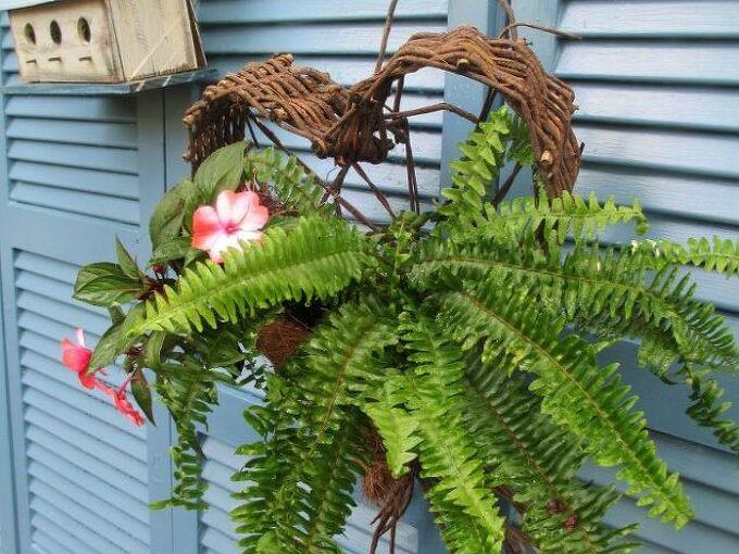 salvaged the 32 shutter challenge repurposing shutters in the garden, gardening, outdoor living, raised garden beds, repurposing upcycling, Shutter Fence