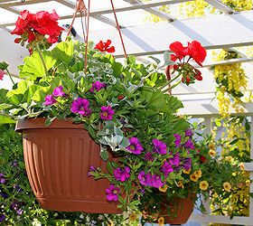 Different Types of Plant Pots to Try Out : different types of flower pots - startupinsights.org