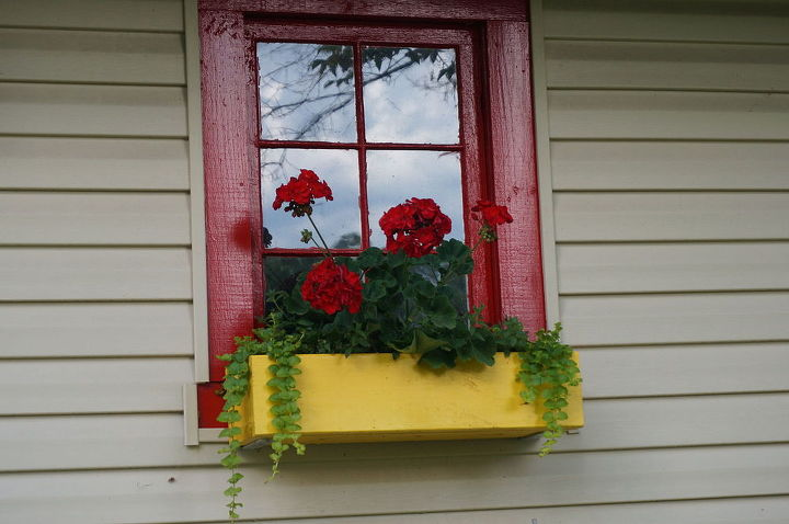 Windowbox on an old outbuilding.