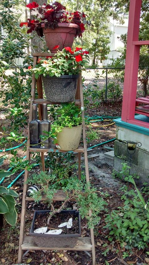 my garden ladder, container gardening, gardening, repurposing upcycling