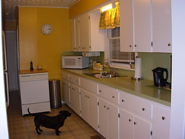 Galley Kitchen Gets A Fresh Makeover Hometalk Extraordinary Galley Kitchen Remodel Painting