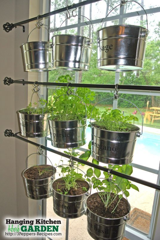 herb kitchen hanging garden rods container gardening gardening kitchen design - Hanging Herb Garden Ideas