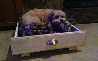 dog bed kitchen drawer repurpose, chalk paint, painted furniture, painting, pets animals, repurposing upcycling