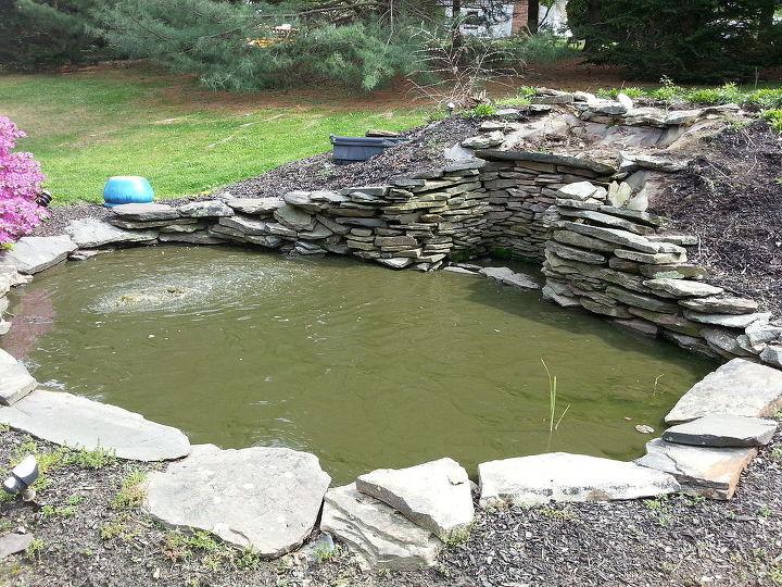 Backyard pond rebuild hometalk for Artificial koi fish for ponds