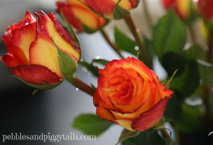 How to Keep a Flower Bouquet Fresh | Hometalk
