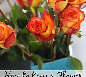 Gardening Tips Flower Bouquet Fresh, Flowers, Gardening, Home Decor