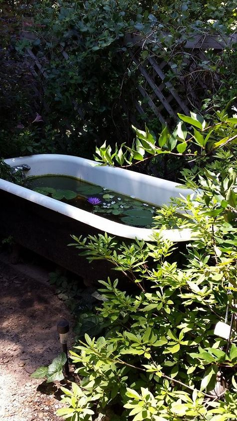 gardening clawfoot tub pond repurpose, gardening, ponds water features