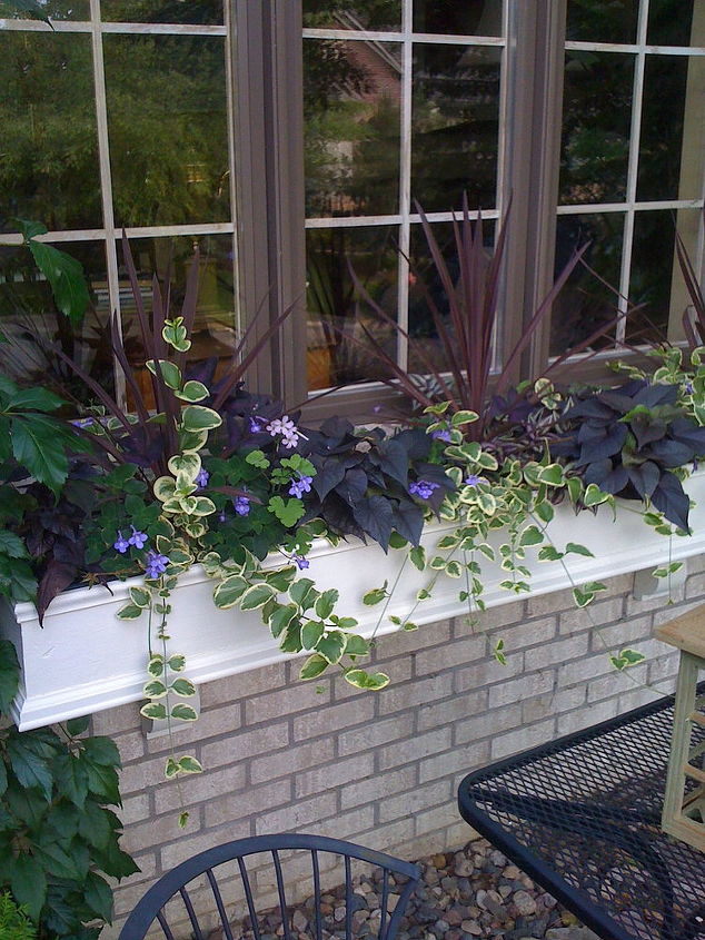 curb appeal flower boxes, curb appeal, flowers, gardening