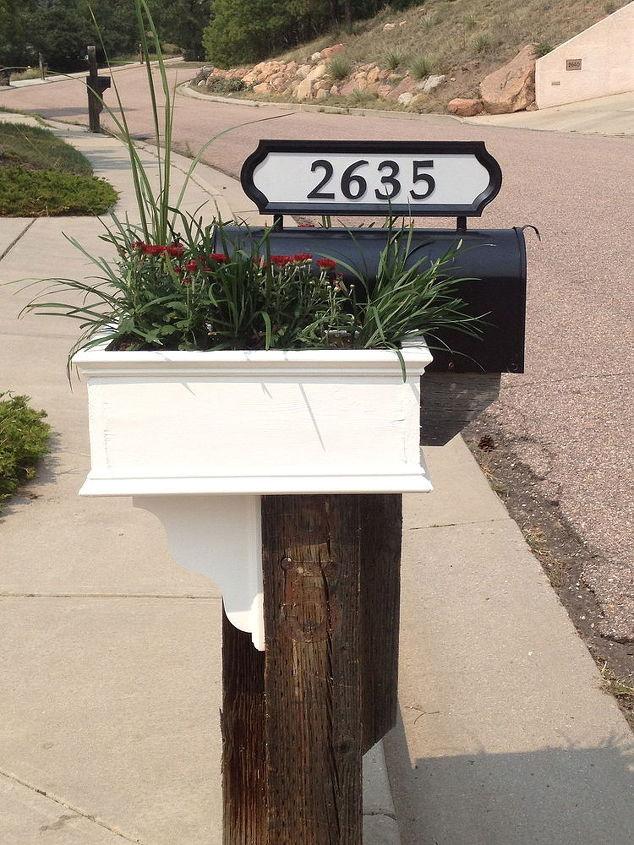 My Mailman's SO happy:)