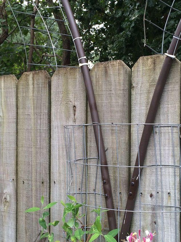 garden ideas trellises inexpensive, diy, gardening, outdoor living